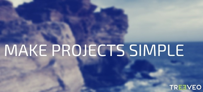 We make projects simple